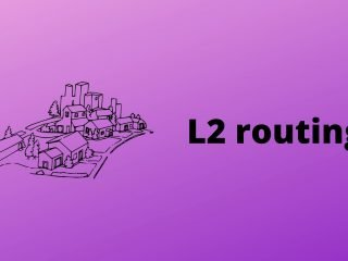 Building a custom network topology with python to demonstrate the L2 routing concept